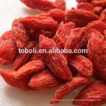 Baya orgánica certificada del goji