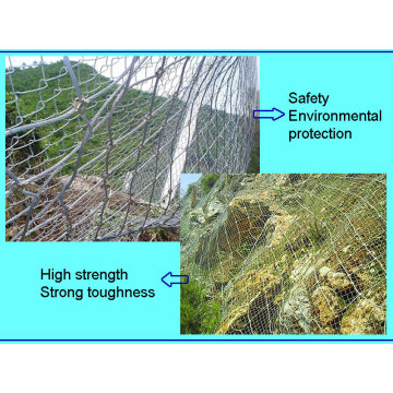 Sns Protective Fence