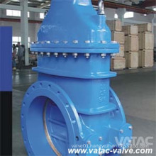 Ductile or Cast Iron Non Rising Stem Gate Valve