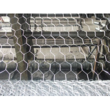 High quality hot-dipped Hexagonal wire mesh