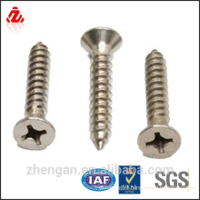 Philips drive screws