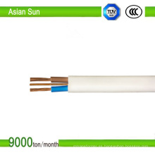 Cable de cobre de la tierra plana gemela TF Ecc Cable BS6004