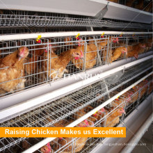 Automatic Bird-harvesting A Type Broiler Poultry Farm Equipment