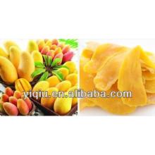 Secadora de secado de mango