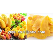 Dried mango drying machine