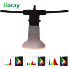 Lâmpadas de florescência do diodo emissor de luz florescendo cheio do espectro para succulents