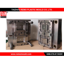 Plastic Two Cavity Thin Wall Mould