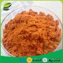 100% natural de polvo de frutos secos wolfberry polvo de jugo de frutas de Goji
