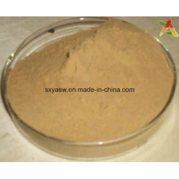Chinese Buckeye Seed Extract Horse Chestnut Extract 98% Aescigenin