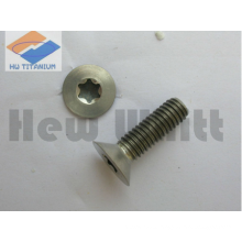 high end Titanium torx head screws