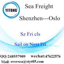 Shenzhen Port LCL Consolidation to Oslo