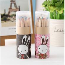 Lápis bonito de madeira de 12 cores mini