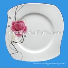 Platos comunes, placas de porcelana de forma única