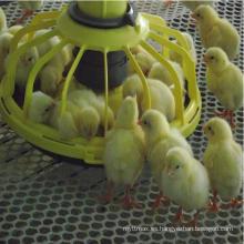 Equipo caliente de la venta de aves de corral del precio de fábrica de la venta para los briloers