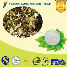 Professional supplier for Acer truncatum P.E. 90% Nervonic acid