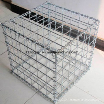 Boîte de Gabion / fabrication de fil hexagonale / panier de Gabion