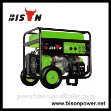 Bison (CHINA) Постоянные портативные генераторы 3kw-10kw генератор 188 двигатель