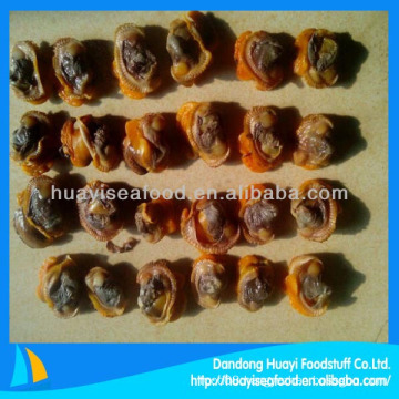 Frozen boiled blood clam iqf