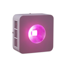 COB Grow Light LED Grow Lights for Indoor Plants