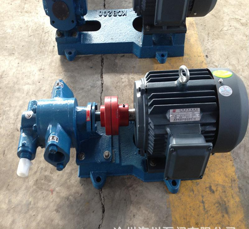 2CY series gear oil pump gear type lubrication pump 4