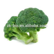 Organic Broccoli Sprout Powder