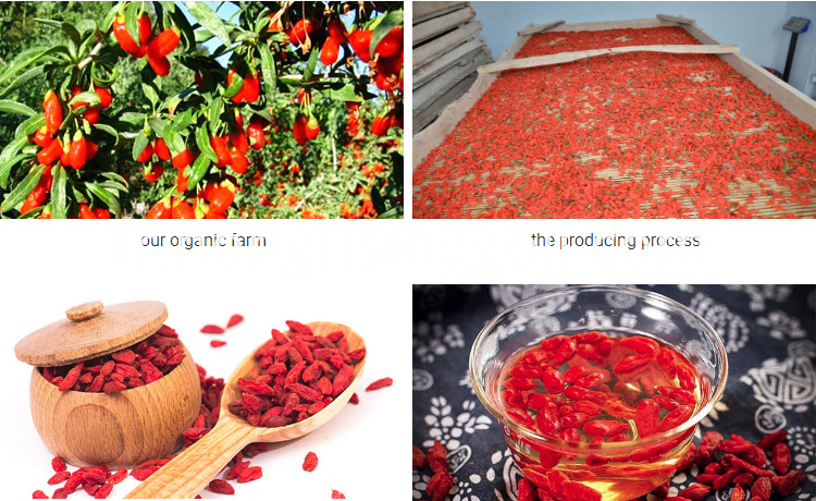 goji berry cooking
