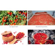 Ningxia Goji Berry Organic Goji Berry