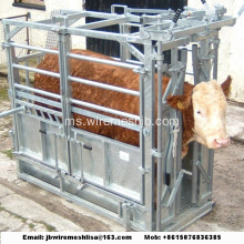 Heavy Duty Galvanized Cow Crush