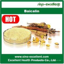 Hot Herbal Extract Natural 85% Baicalin Baical Skullcap Extract