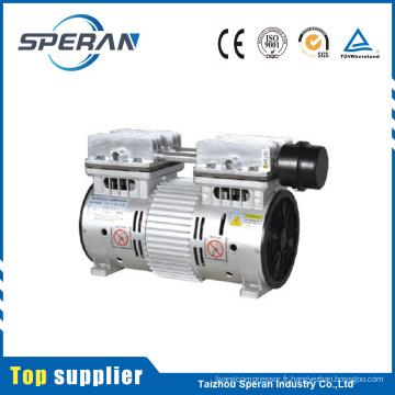 Usine meilleur prix 2 cylindre sans huile micro compresseur d'air pompe à vendre