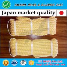 Cuerda trenzada kp de la calidad japonesa 3 de los hilos hecha del hilo del monofilamento y del poliester del pe