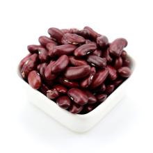 Alubias secas de color rojo oscuro para conservas