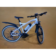 Ce Power Champion Electric Bike with Lithium Battery (BN2604)