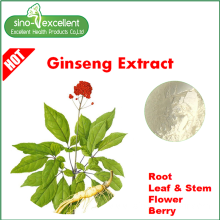 Goods high definition for Korean Ginseng Extract Panax Ginseng Flower Extract powder supply to France Manufacturers