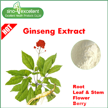 Panax Ginseng Flower Extract powder