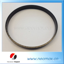 Customized Rubber magnet with PPC in ring shape for sales