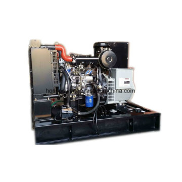 Generatore diesel 12.5kVA alimentato dal motore cinese Yangdong
