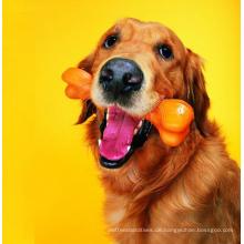 Hoher Nahrung-Hundefutter Haustier-Imbiss kauen Hundeknochen