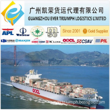 Sea Freight From China to South Africa 20/40gp Container