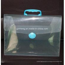 Bolso plástico de la impresión de encargo de la fábrica para el archivo (bolso del archivo de los PP)