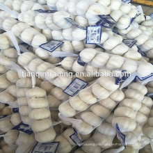 4cm 5cm small packing garlic