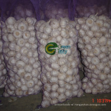 Fresh New Crop Chinese Pure White Garlic