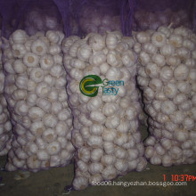 2015 Chinese Fresh Natural Garlic Price