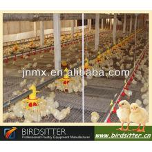 La grille-pain et l'éleveur de vente les plus chauds utilisent l'équipement de poulet