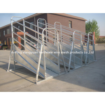 Fixed Cattle Loading Ramp