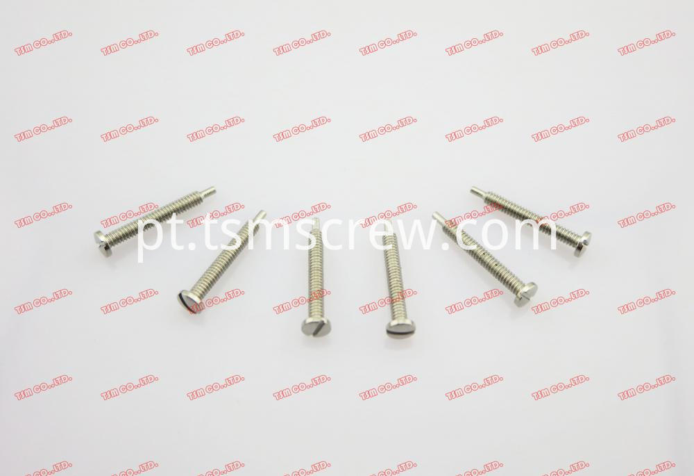 TSM Silver Self Tapping Screw-1