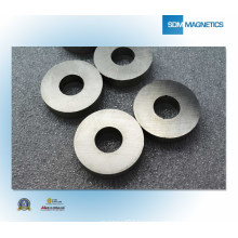 ISO/Ts 16949 Certificated Ring Cheap Magnet