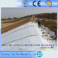 Fabrik Preis Geosynthetics Kunststoffmaterialien HDPE Geomembrane Liner