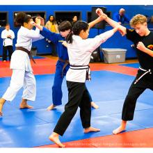 LinyiQueen second hand judo mat vinyl for martial arts jiujitsu certification tatami oficial second hand judo mats