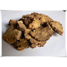 Factory Natural Szechuan Lovage Rhizome/ Ligusticum Wallichii Extract Powder